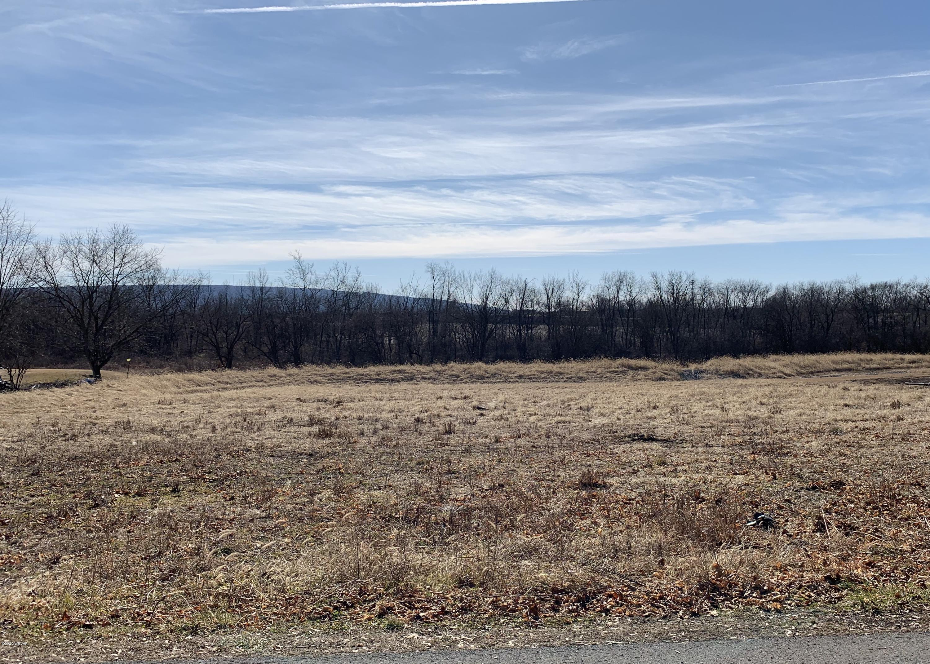 SHOWERS ROAD, Milton, PA 17847, ,Land,For sale,SHOWERS,WB-89511