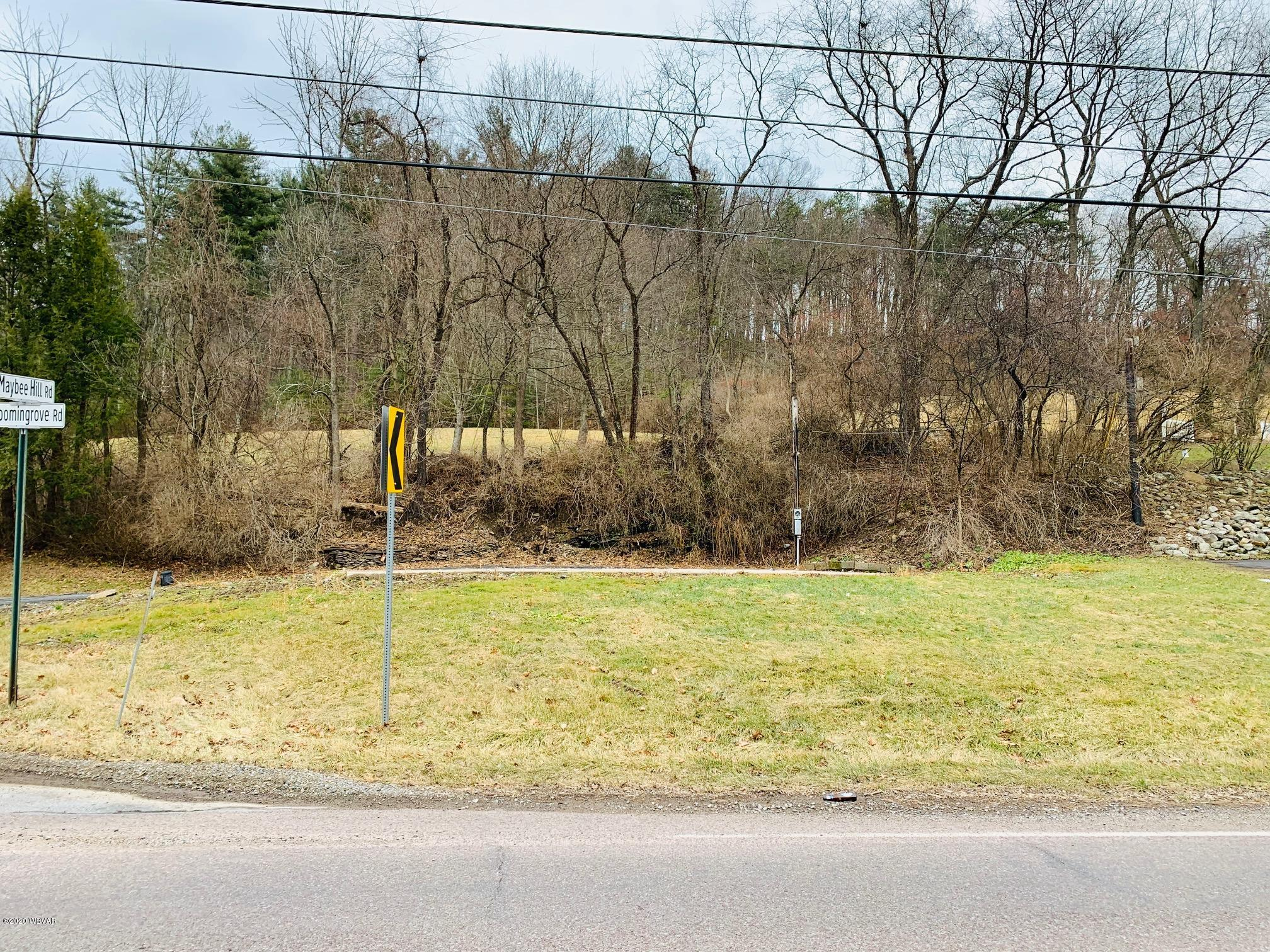 1756 BLOOMINGROVE ROAD, Williamsport, PA 17701, ,Land,For sale,BLOOMINGROVE,WB-89522