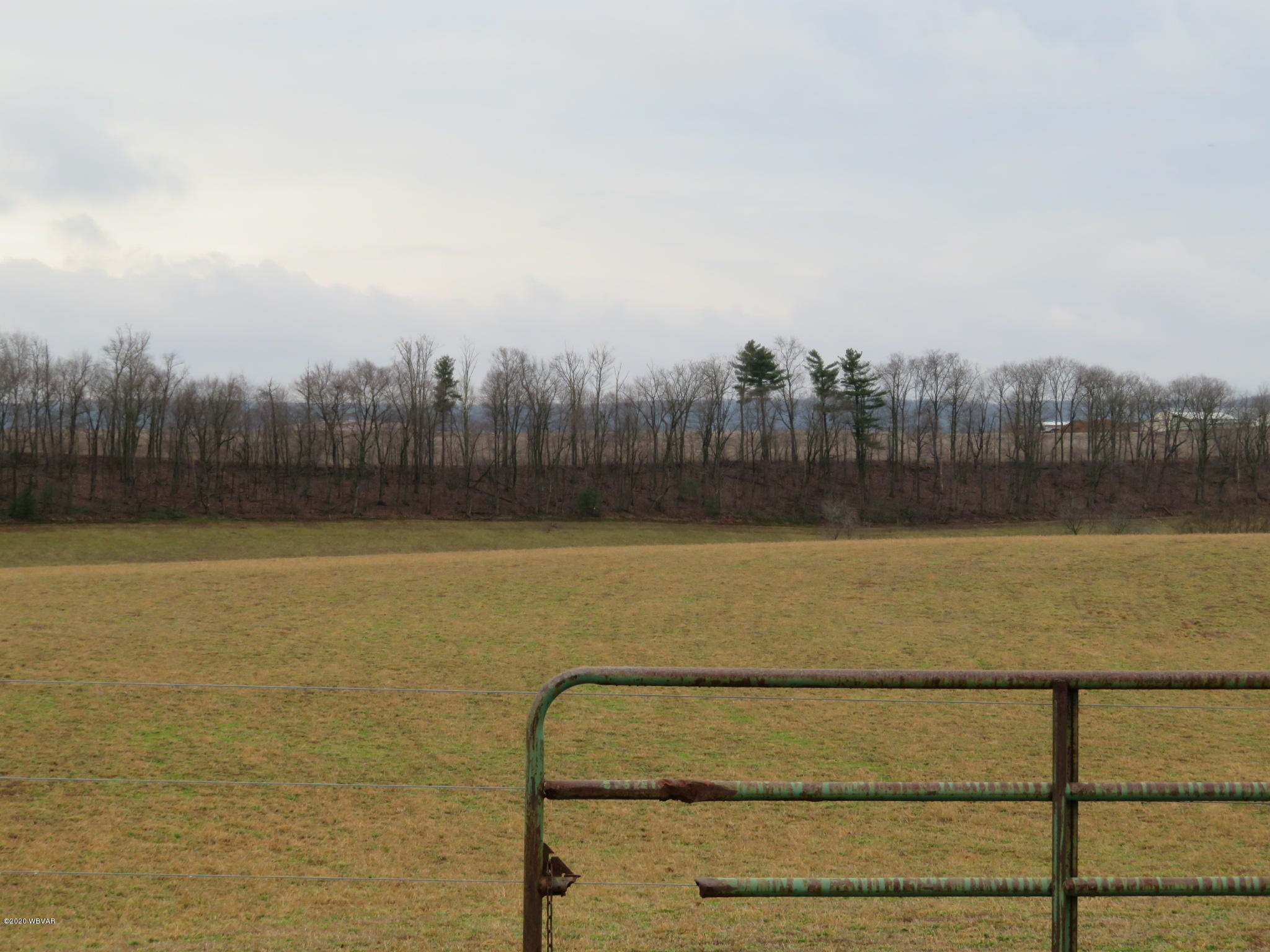 00 KAUFFMAN ROAD, Dornsife, PA 17823, ,Land,For sale,KAUFFMAN,WB-89613
