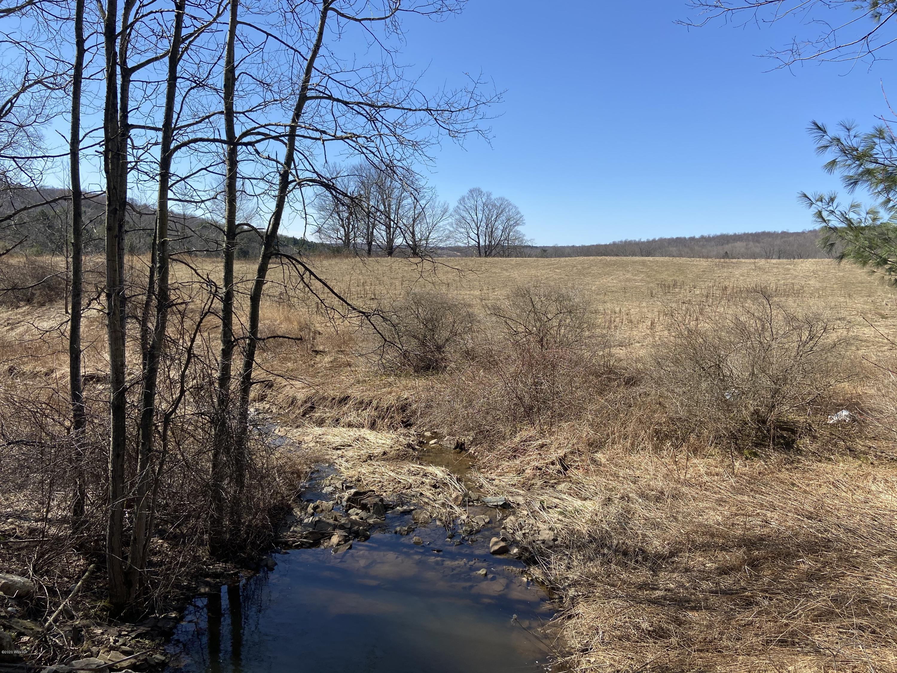 MCILWAIN ROAD, Canton, PA 17724, ,Land,For sale,MCILWAIN,WB-89828
