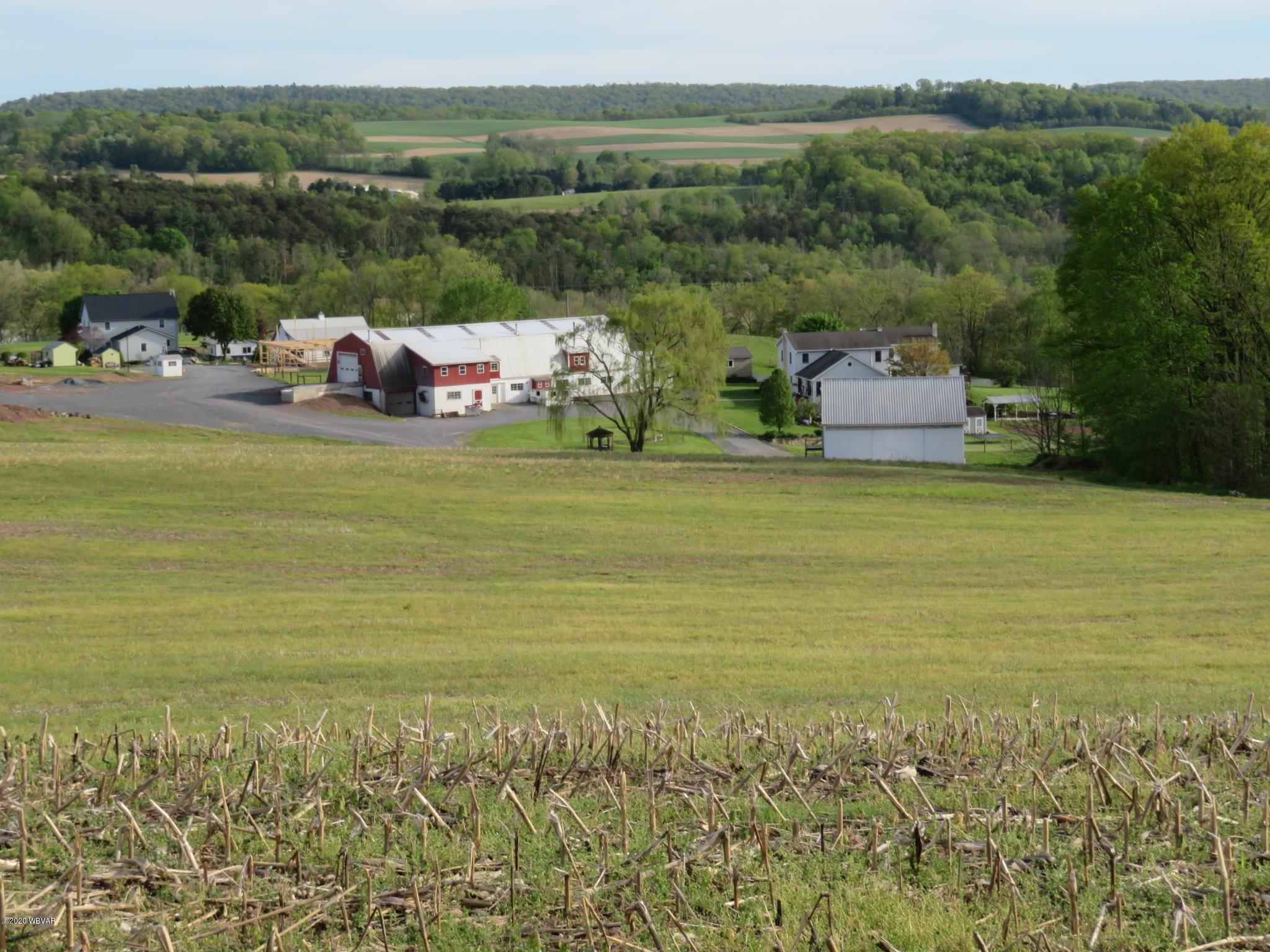 184 HIDDEN ACRES LANE, Dornsife, PA 17823, 9 Bedrooms Bedrooms, ,2 BathroomsBathrooms,Farm,For sale,HIDDEN ACRES,WB-89649