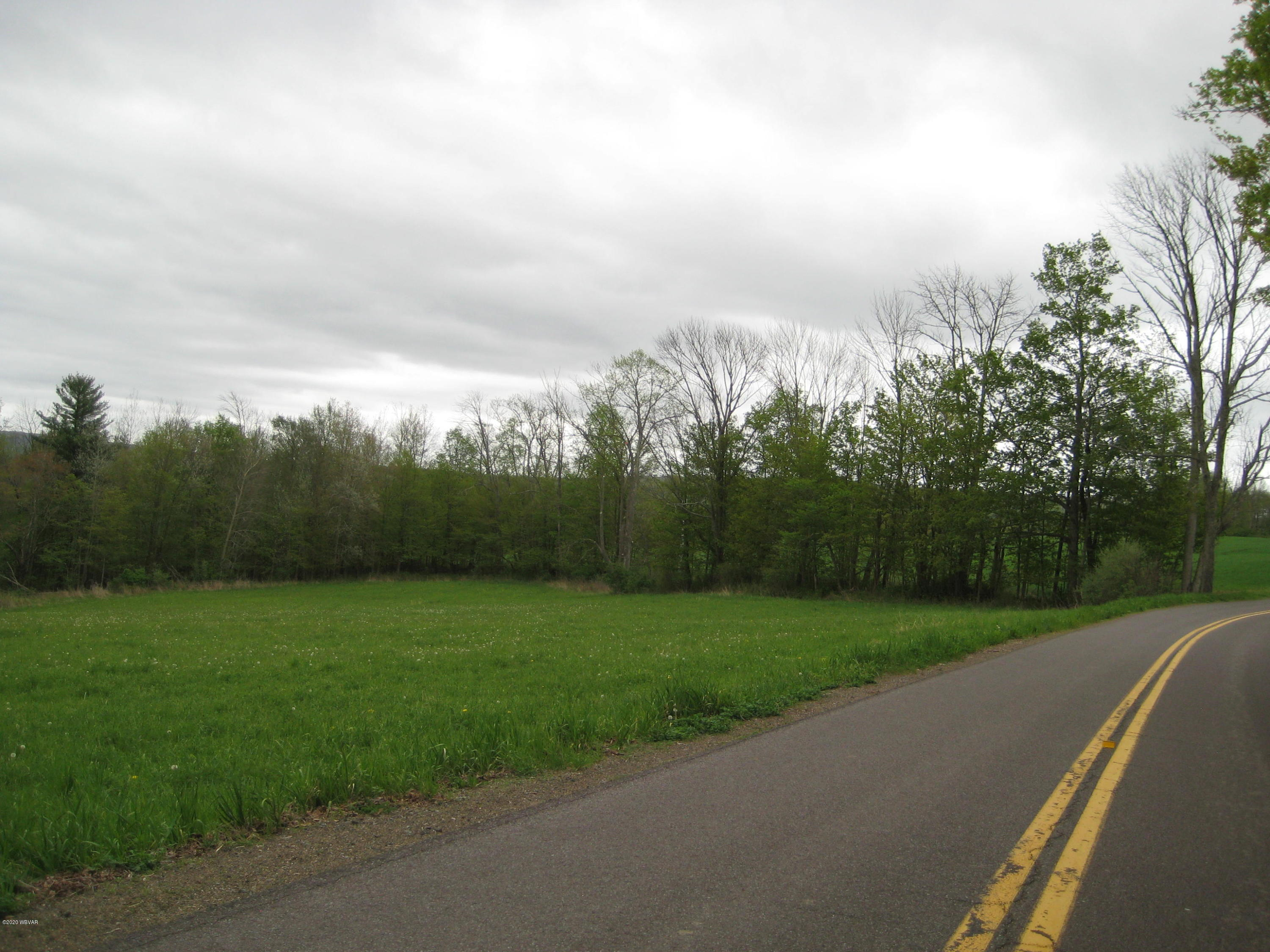 MOLYNEUX HILL ROAD,Forksville,PA 18616,Land,MOLYNEUX HILL,WB-90157