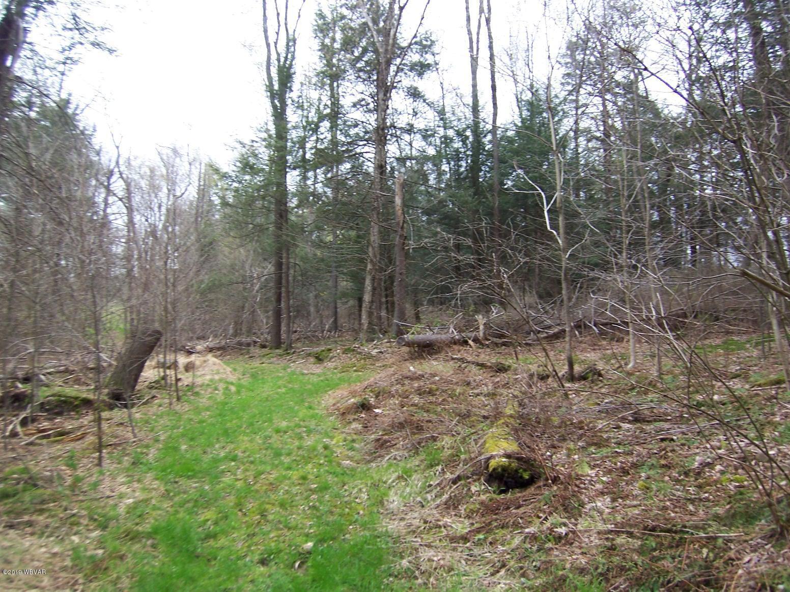 110 MOYER LANE,Loganton,PA 17747,Land,MOYER,WB-90184