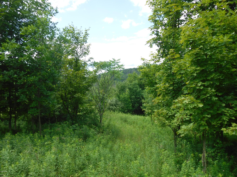 200 SPOKE LANE, New Albany, PA 18833, ,Land,For sale,SPOKE,WB-90588
