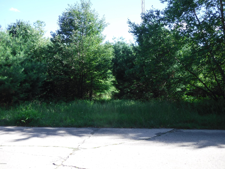 95 LARK ROAD, Dushore, PA 18614, ,Land,For sale,LARK,WB-89629