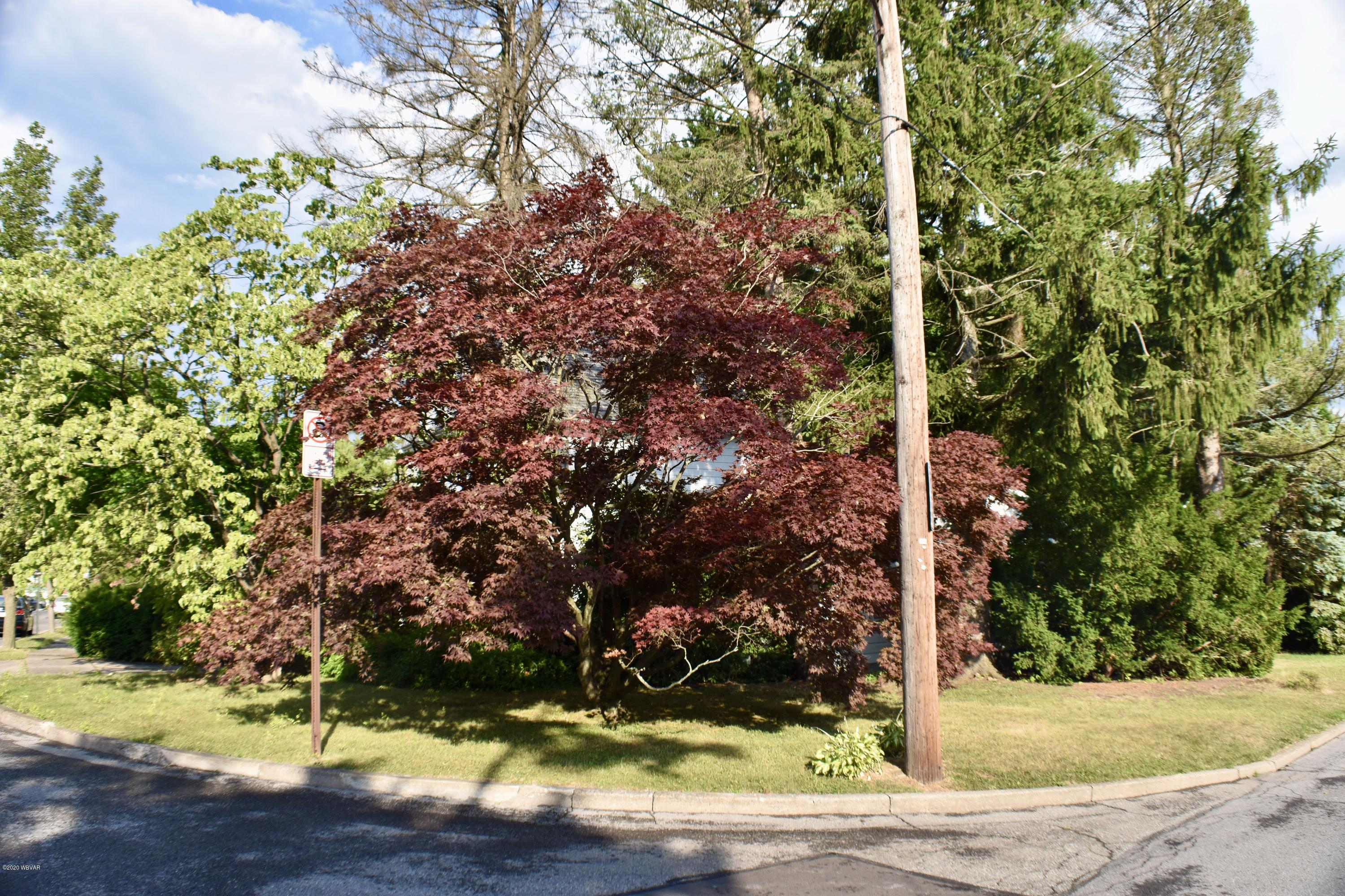526 MAPLE STREET, Lock Haven, PA 17745, 3 Bedrooms Bedrooms, ,1 BathroomBathrooms,Residential,For sale,MAPLE,WB-90773