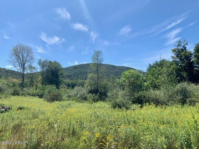 WALLIS RUN ROAD, Trout Run, PA 17771, ,Land,For sale,WALLIS RUN,WB-88524