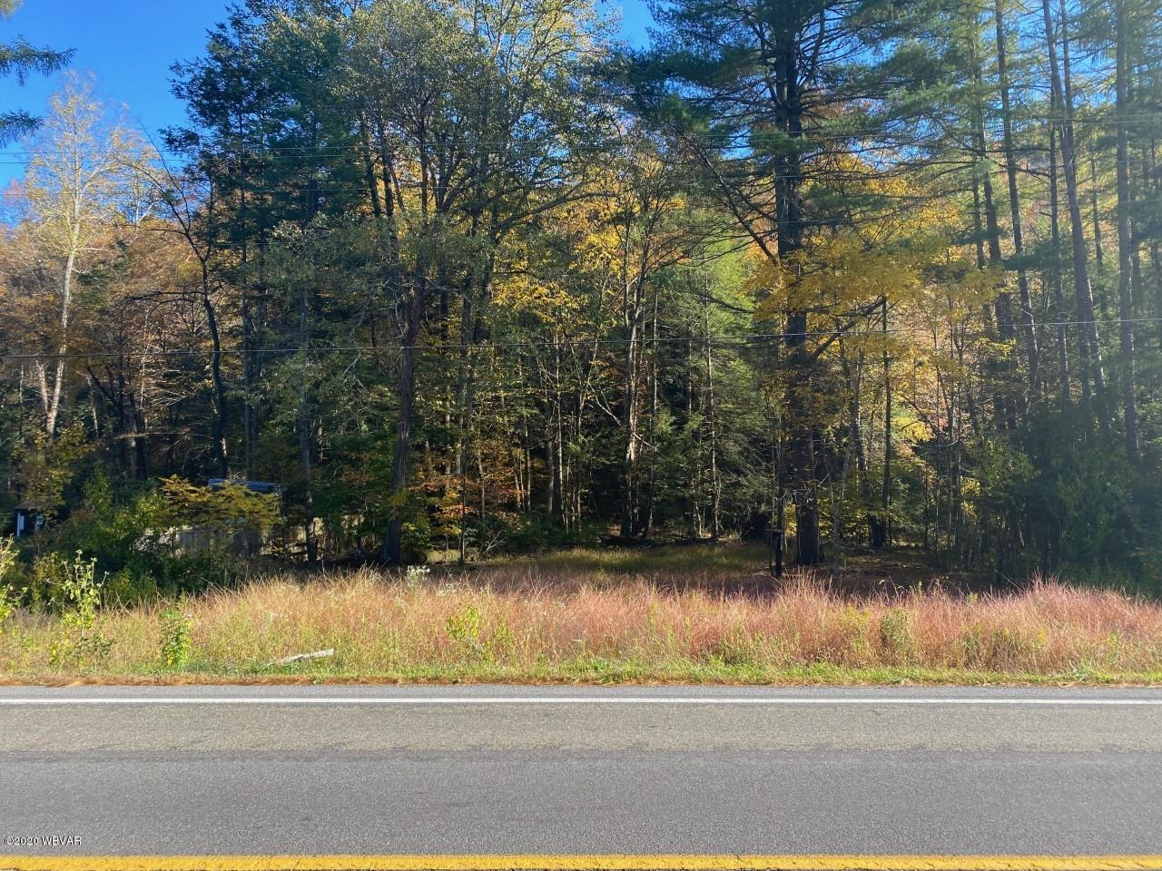 9000 STATE ROUTE 87 HIGHWAY, Williamsport, PA 17701, ,Land,For sale,STATE ROUTE 87,WB-91333