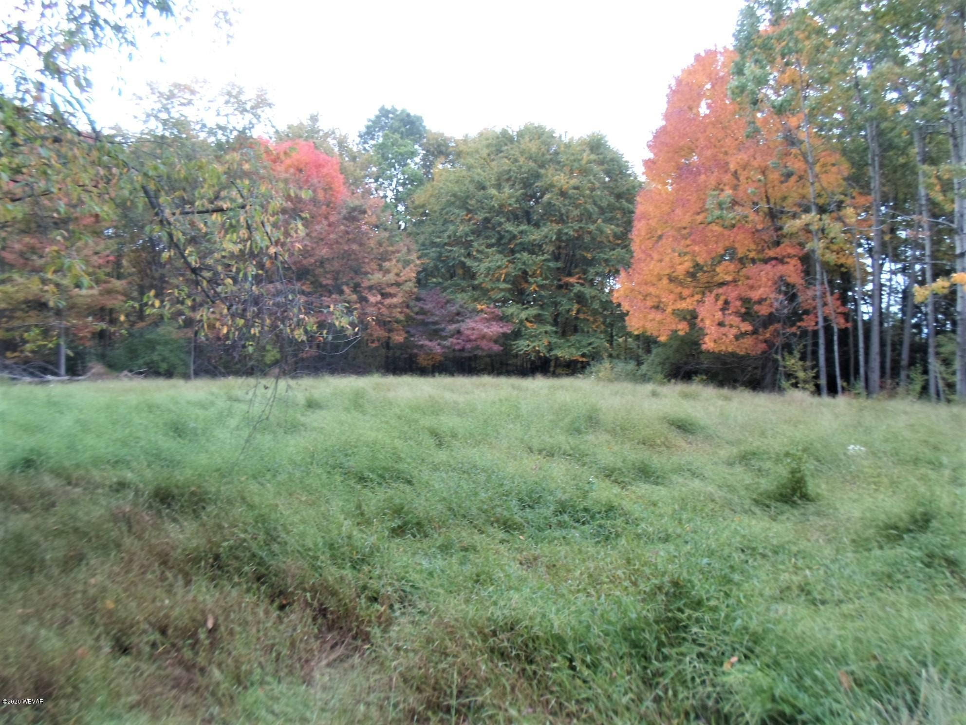 COUNTY LINE ROAD, Muncy, PA 17756, ,Land,For sale,COUNTY LINE,WB-91342