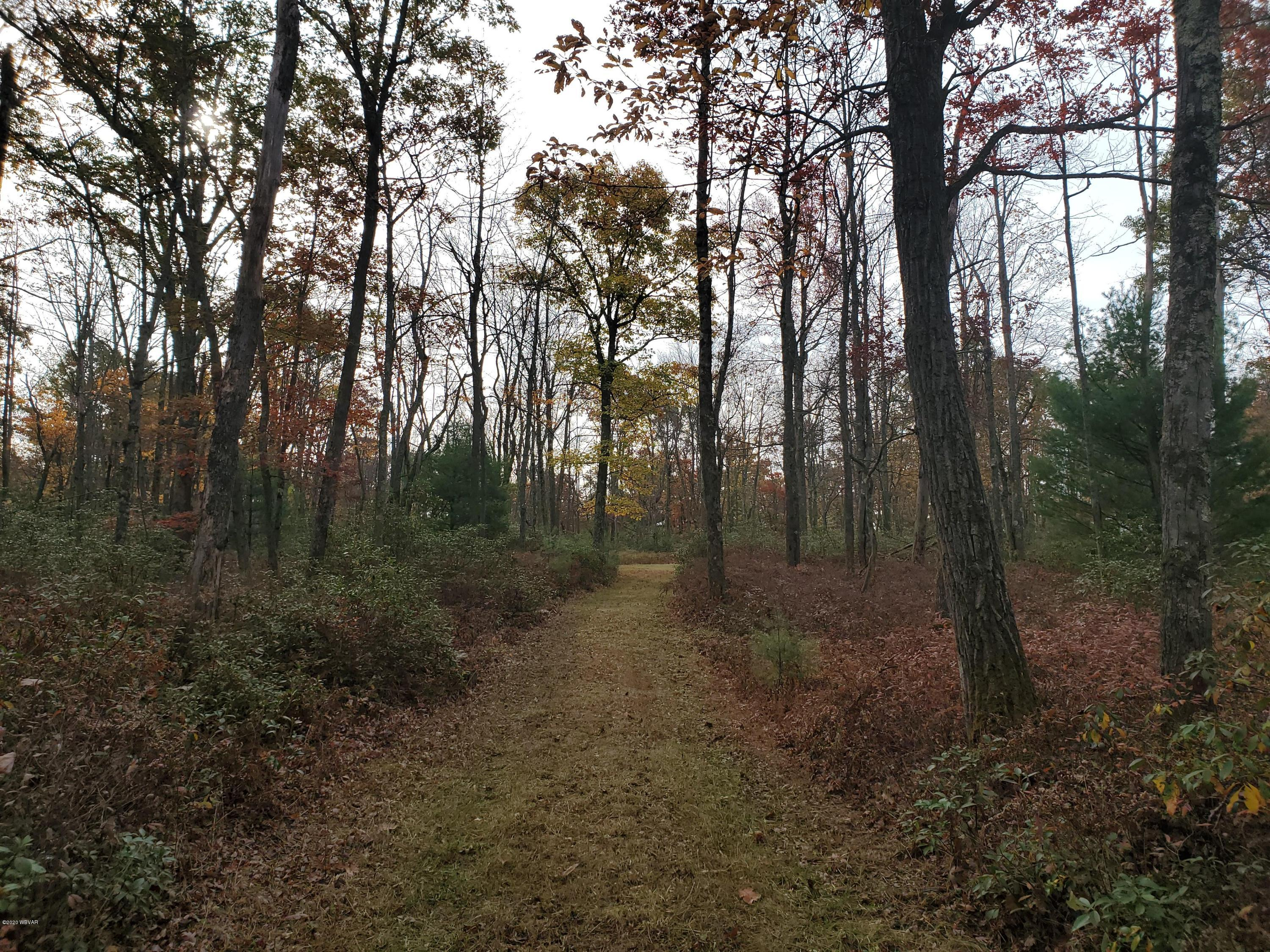 Beech Creek, PA 16822, ,Land,For sale,WB-91371