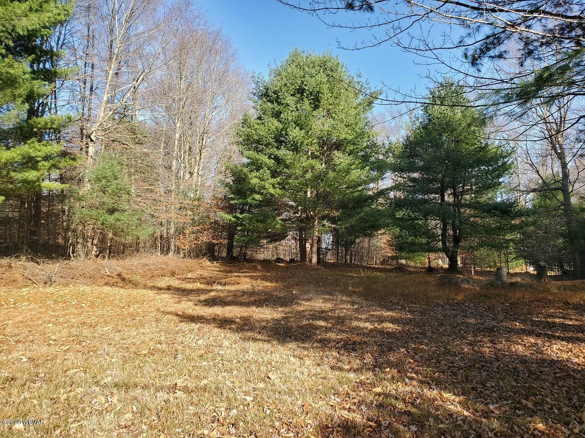 INDIAN SPRINGS PATH, Lock Haven, PA 17745, ,Land,For sale,INDIAN SPRINGS,WB-91490