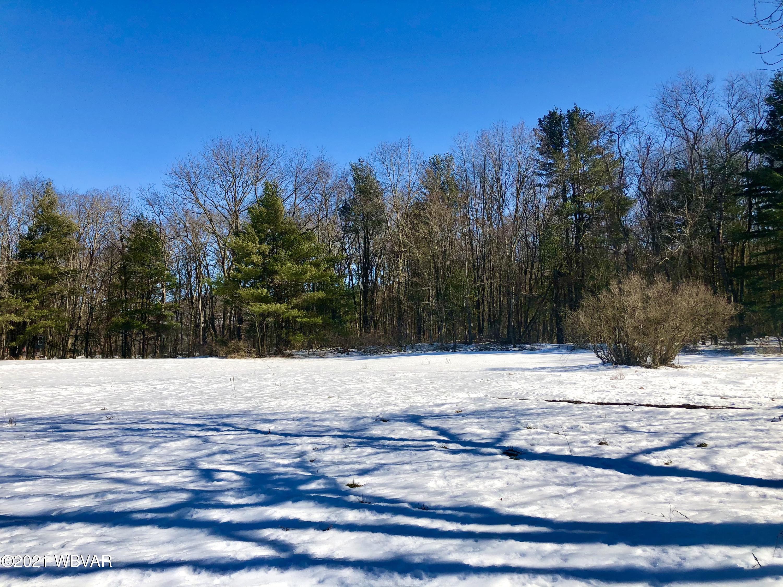 314 PINE MOUNTAIN ROAD, Lock Haven, PA 17745, ,Land,For sale,PINE MOUNTAIN,WB-91952
