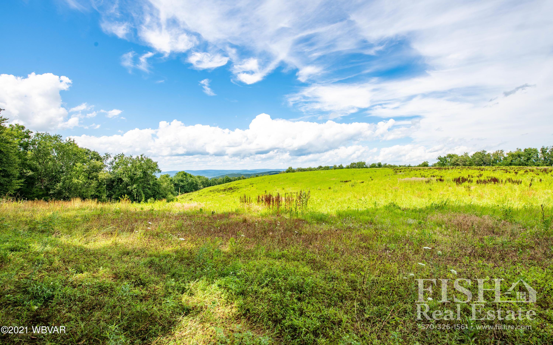 BITLER HILL ROAD, Muncy, PA 17756, ,Land,For sale,BITLER HILL,WB-91978
