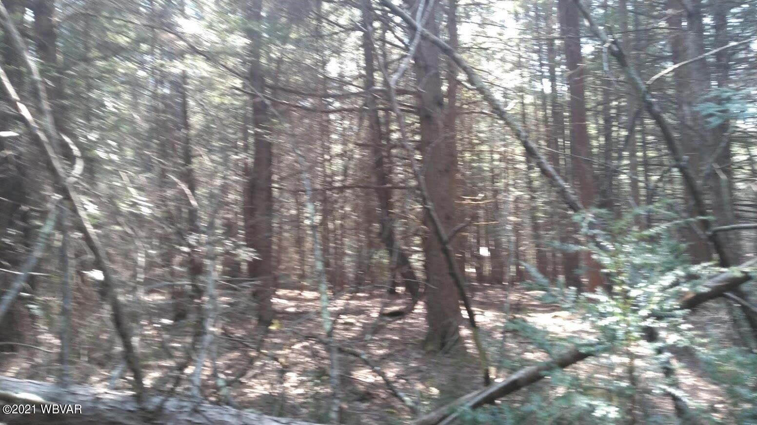 4026 QUEENS RUN, Woolrich, PA 17779, ,Land,For sale,QUEENS,WB-92284