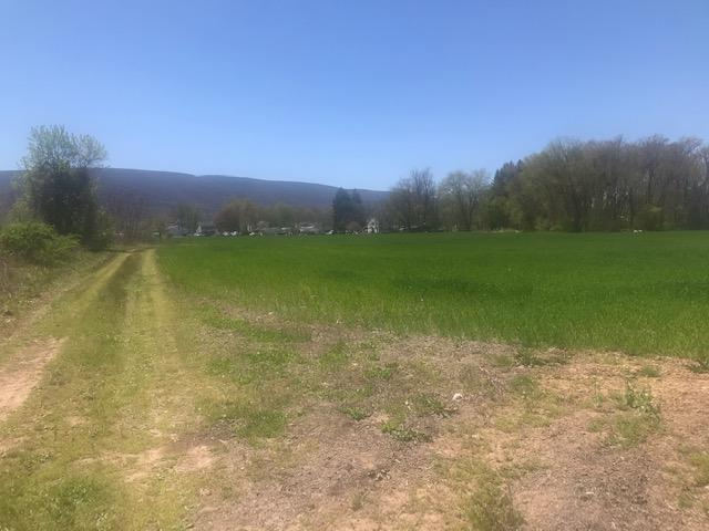 CRAWFORD ALLEY, Montoursville, PA 17754, ,Land,For sale,CRAWFORD,WB-92467