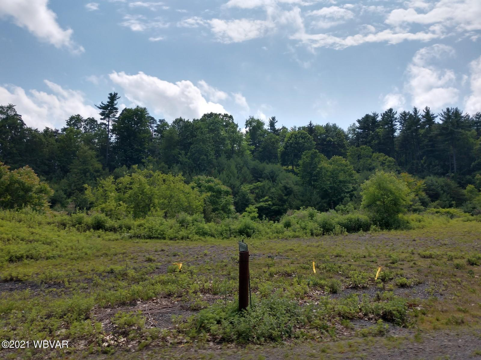 2360 WHEATLAND AVENUE, Williamsport, PA 17701, ,Land,For sale,WHEATLAND,WB-92793
