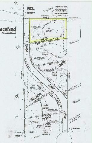 Lot 1 Blk 1 Swan Lake Dr,Kandiyohi,Agriculture,Lot 1 Blk 1 Swan Lake Dr,6033303