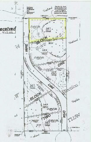 Lot 2 Blk 2 Swan Lake Dr,Kandiyohi,Agriculture,Lot 2 Blk 2 Swan Lake Dr,6033308