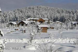Winter View Of Pat Mullens Mtn