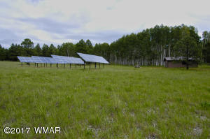 Solar Farm and Room