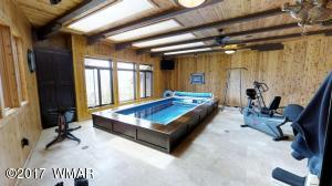 Indoor pool and workout room