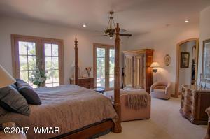 Downstairs Master Bedroom (3)