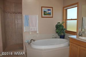 040_Master Tub & Shower