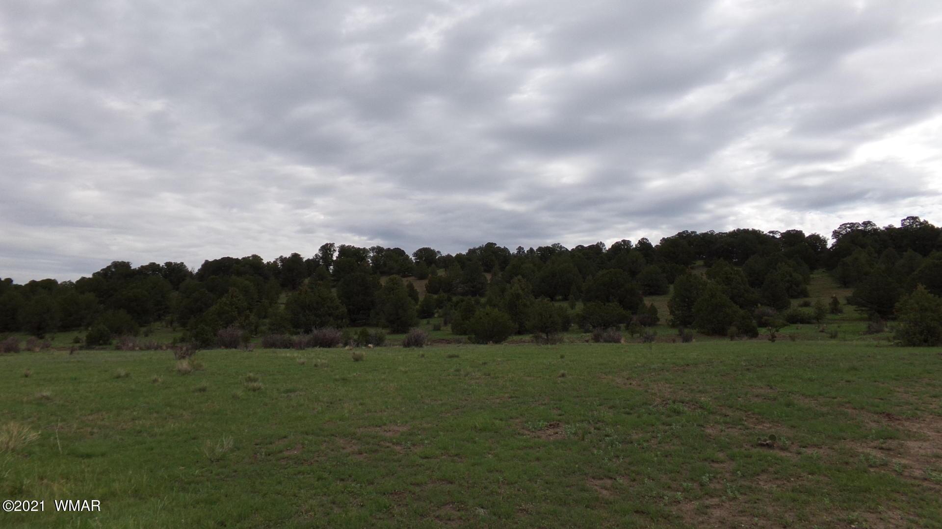 Photo of TRACT C HWY 180 MM 414, Nutrioso, AZ 85932