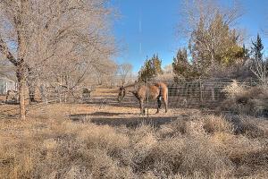 N/a NW, Albuquerque, NM 87114