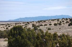 173 Campfire Road, Magdalena, NM 87825