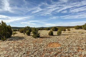 V-Hill Road, Edgewood, NM 87015
