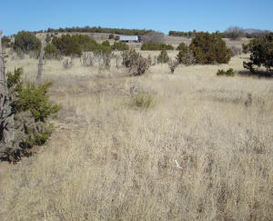 Property for sale at 1865 Rte 66, Edgewood,  NM 87015