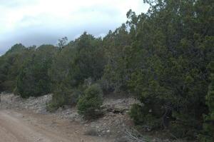 3 Enchantment View (L16,B6,FH), Tijeras, NM 87059