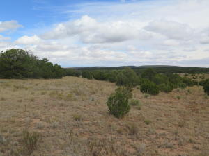 Property for sale at 565 Juan Tomas Road, Tijeras,  NM 87059