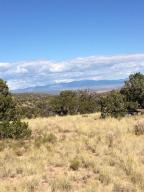 101 Wild Marigold Court, Placitas, NM 87043