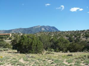 WINDMILL TRAIL SOUTH, Placitas, NM 87043