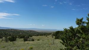 31 E Rock Springs Loop, Datil, NM 87821