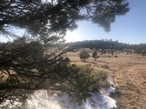 Tract 16 James Valley Ranch, Ramah, NM 87321