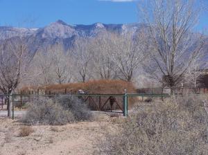 Camino De Claudio, Corrales, NM 87048