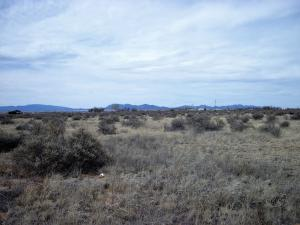0 Abrahames Road, Moriarty, NM 87035