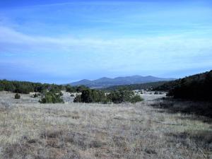 1 Kings Road, Tijeras, NM 87059