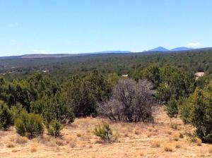 24 Cole Younger, Edgewood, NM 87015
