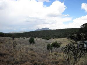 2 Kings Road, Tijeras, NM 87059