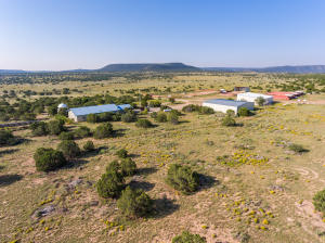 Property for sale at 5606 State Highway 55, Mountainair,  New Mexico 87036