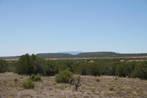 0 Bullock Road, Moriarty, NM 87035