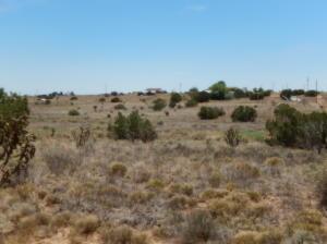 42 Morris Road, Edgewood, NM 87015