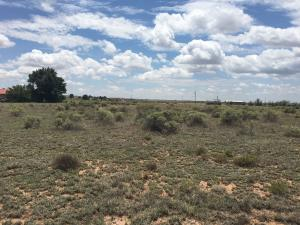 Martinez Road, Moriarty, NM 87035