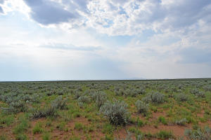 Lot 17 Rio Grande Estates, 10, Rio Communities, NM 87002