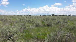 Lot 24 Esperanza, McIntosh, NM 87032