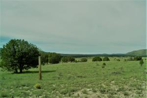 Thomas IV Road, Datil, NM 87821